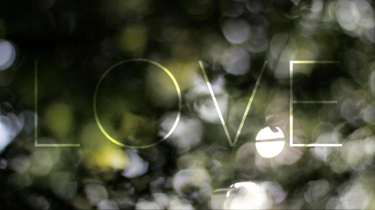 LOVE _still 2
